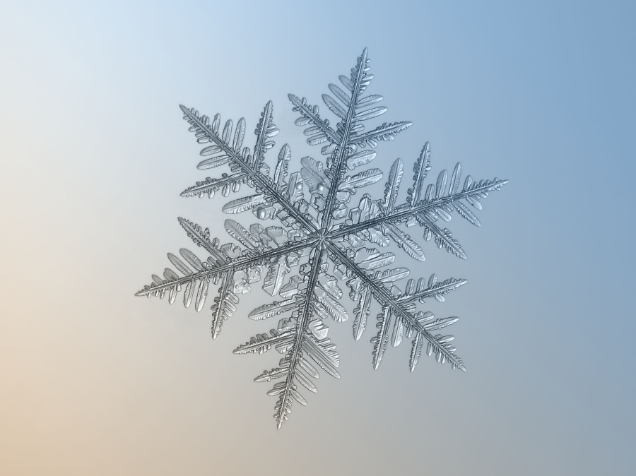 snowflake decorative